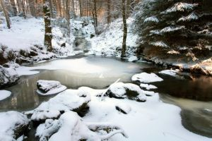 Snowy scene with frozen pool in Galloway Forest Park