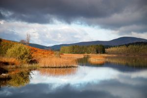 Loch in Galloway Forest Park